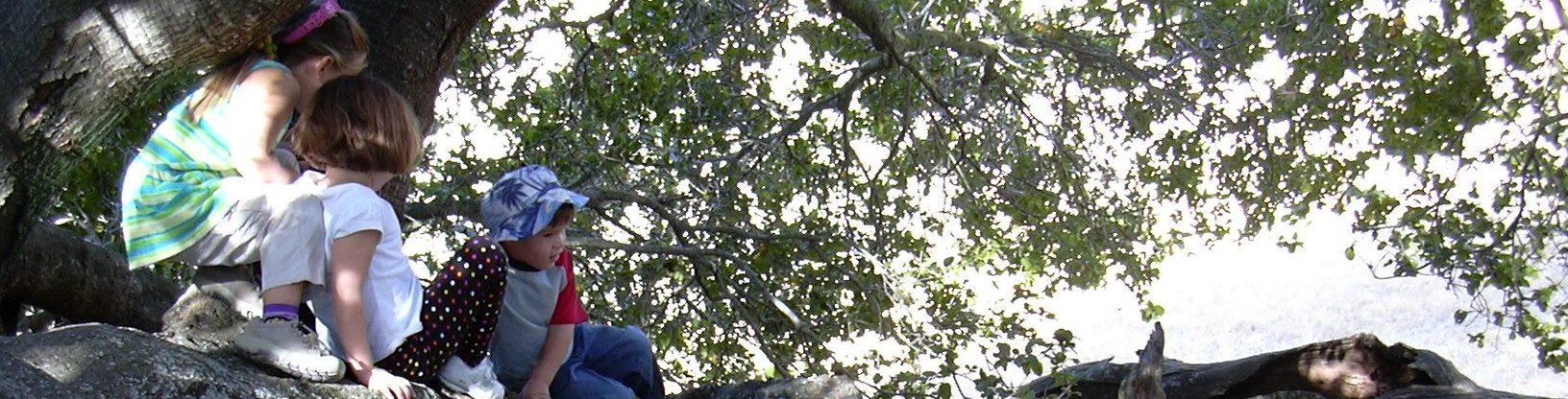 Hummingbird Hill Playgarden